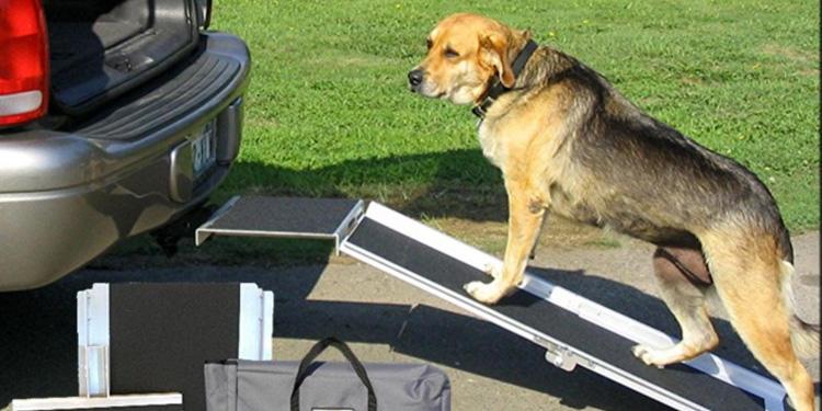 suv dog ramp